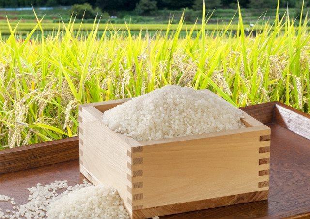 岡山の新米は【下山さんちのお米】でお求めを~高品質でおいしいお米をご提供~